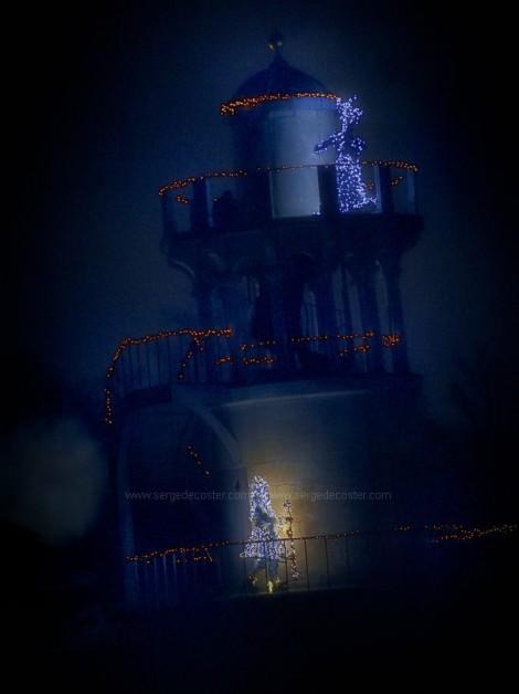 290 Le château de Versailles, spectacle 'Les  féeries de la Reine'